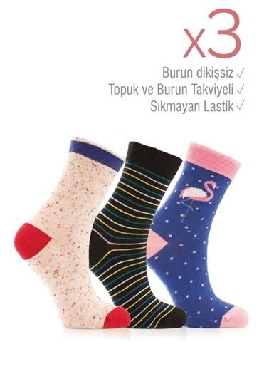 Miorre 3'lü  Desenli Kadın Soket Çorap Renkli